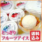 (アイスクリームギフト) どっさりフルーツアイスセット ice cream  gift お中元 ギフト 送料込み