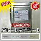 高強度 FRPトップコート グレー 2kg 促進剤入り 硬化剤 40gセット 塗料