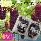 【送料無料】大阪産 デラウェア 1箱4パック入り l〜LL 計1.2kg ※クール便発送