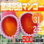 【送料無料】宮崎県産 宮崎完熟マンゴー 2玉 3L 約500g前後【送料無料】※クール便発送