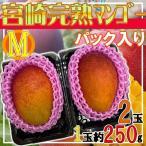 【送料無料】宮崎完熟マンゴー Mサイズ 2玉 1玉約250g