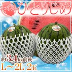 【送料無料】和歌山県産 ひとりじめ 2玉 1玉約2.3kg 2L