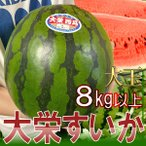 【送料無料】鳥取県産 大栄すいか 4L 1玉約9kg以上