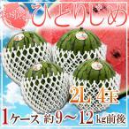 【送料無料】和歌山県産 ひとりじめ L 6玉 1玉約1.8kg以上 高糖度