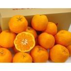 愛媛産訳ありぽんかん2kg×1箱 送料無料 買えば買うほどお得に【2箱で+2kg(6kgセット) 3箱で+6kg(12kgセット)】ポンカン 椪柑 フルーツ 果物 みかん 柑橘類