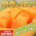 大豊作 赤肉メロン2玉入【送料無料】1箱 秀品