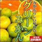 真夏に食べれる温州みかん♪訳ありハウスグリーンみかん2kg【送料無料】【不揃い・傷あり】 フルーツ 果物 くだもの 食品 ふぞろい みかん 柑橘類 ミカン