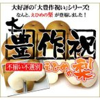 大豊作祝い梨 4kg(不ぞろい・不選別・訳あり) 【送料無料】