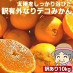 愛媛産 ご家庭用 農家さんもぐもぐ 外なり訳ありデコみかん 10kg(+約0.5kg多め) デコポン でこぽん 不揃い 傷 汚れ有 フルーツ 果物 くだもの みかん 柑橘類