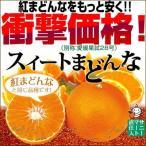 スイートまどんな(訳あり)10kg【送料無料】 愛媛県産 家庭用 ゼリー食感 紅まどんなと同品種 フルーツ 果物 くだもの わけあり マドンナ みかん 柑橘類 ミカン