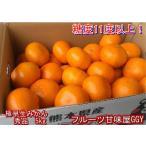 極早生みかん 秀品 1箱5kg サイズL・M・S 熊本産 フルーツ グルメ 80サイズ