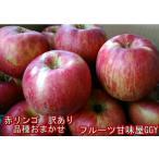 りんご 訳あり(サンつがる・早生ふじ・サンふじ)など 産地おまかせ(長野・青森・山形)1箱約10キロ(約24〜50玉)フルーツ グルメ