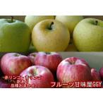 赤りんご・青りんご 訳あり 食べ比べ1箱(各約5キロ 計約10キロ) 産地おまかせ(長野・青森・山形)フルーツ グルメ