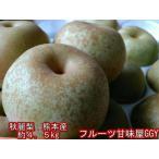 秋麗梨 熊本産 1箱約4.5キロ(約10〜22玉)希少品! 秋麗 なし ナシ フルーツ