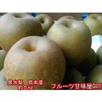 熊本産 豊水梨 約5キロ(約11玉〜20玉) なし 梨 ナシ