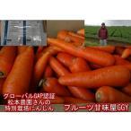 松本農園さんの特別栽培にんじん 訳あり 1箱約10kg(9kg+保証分500g)安心安全 特別栽培農産物 世界が認めたグローバルGAP認証 無農薬 有機栽培