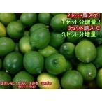 【セット】国産レモン 訳あり 璃の香 リスボン 熊本産 1セット(1.5kg)2セット購入で1セットおまけ!3セット購入で3セットおまけ!りのか 60サイズ