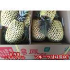 台湾産 パイナップル 約10kg 金鑚パイン 完熟 パイン 120サイズ