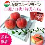 敬老の日 プレゼント ギフト フルーツ 桃 モモ もも 山梨県産 特産品 甲斐黄金桃 特秀 1kg 送料無料 一部地域を除く