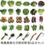 有機と旬で付き合うお試し野菜セット 山梨県産 無農薬無化学肥料栽培野菜5品目詰め合わせ
