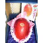 宮崎完熟マンゴー 3Lサイズ大玉1個化粧箱入り