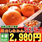 [蔵出しみかんS2.5kg]和歌山県下津産!送料無料!和歌山県下津産2月上旬より出荷開始!