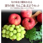 サンつがる&シャインマスカット 内祝い お祝い お礼 お見舞い お供え [実りの秋りんご&ぶどう] 敬老の日ギフト