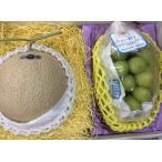 フルーツ詰め合わせ 大地のしずく 長野産 シャインマスカット 静岡産 クラウンメロン