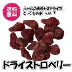 送料無料(ドライストロベリー 1kg )業務用 ドライフルーツ ビタミンC イチゴ 苺