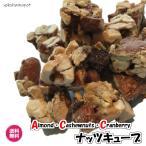 バニラ香る(ナッツキューブ 100g×2)サクサク 送料無料 ギフト アーモンド カシューナッツ クランベリー ACC