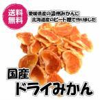 送料無料 愛媛産ドライみかん 500gパック ドライオレンジ (国産みかん500g)