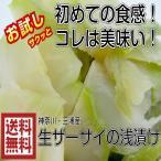送料無料 青木さんの三浦(ザーサイ浅漬け 徳用 500g)