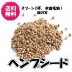 送料無料(ヘンプシード 500g)オメガ3系脂肪酸 オメガ6系脂肪酸 スーパーフード