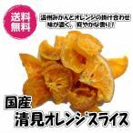 国産ドライ清見オレンジ 140g/70gパックが2袋入り 送料無用(清見70g×2P)ドライフルーツ 国産 ビタミンC ドライみかん みかん オレンジ チャック袋