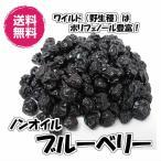 ノンオイル ブルーベリー アメリカ産 280g 野生種 ドライフルーツ 送料無料(ブルーベリー280g)お試し商品 ワイルドブルーベリー チャック袋