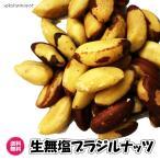 送料無料 無添加(ブラジルナッツ 500g)生ナッツ 無塩 無添加 ブラジル産