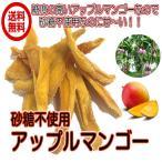 ドライアップルマンゴー 砂糖不使用 1kg/500gパックが2袋入り 送料無料 ドライマンゴー (アップルマンゴー500g×2P) ドライフルーツ  チャック袋 業務用