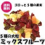 5種のドライフルーツミックス 大粒タイプ 1kg/500gパックが2袋入り 送料無料(大粒ミックス500g×2P) ドライフルーツ ミックスフルーツ チャック袋 業務用