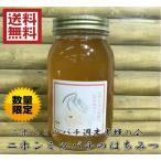 送料無料 限定数!【ニホンミツバチ週末養蜂の会】(日本蜜蜂の純粋蜂蜜100% 1kg)無添加 非加熱 国産 はちみつ ハチミツ