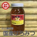 送料無料 井上養蜂場 (国産蜂蜜100% 1kg)無添加 非加熱 国産 はちみつ ハチミツ