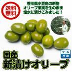 国産(新漬けオリーブ 1kg)オリーブ 香川県 小豆島産 クール便