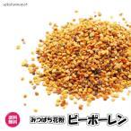 ビーポーレン 5kg/1kgパックが5袋入り スペイン産 食用花粉 スーパーフード 送料無料 (ビーポーレン1kg×5P)ハチミツ はちみつ 純正 蜂蜜 天然 業務用