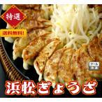 特選(浜松ぎょうざ 120個)冷凍餃子 ギョウザ ギョーザ1個20g 本島送料無料 産直