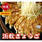 本島送料無料 特選(浜松ぎょうざ 60個)冷凍餃子 ギョウザ ギョーザ1個20g