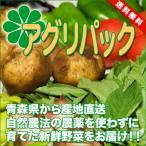 [送料無料]定期購入商品 アグリパック 4週間配送(青森 アグリメイト南郷)無農薬野菜セット 自然農法野菜詰め合わせパック