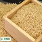 お米 新米 農薬不使用(無農薬) つがるロマン 玄米10kg 自然農法 (青森県 アグリメイト南郷) 産地直送