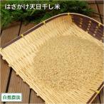 お米 新米 農薬不使用(無農薬) 田口さんちのはさがけ天日干しもち米(アネコもち) 玄米 10kg 自然農法 (青森県 だんごっこファーム) 産地直送