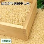 お米 新米 農薬不使用(無農薬) 田口さんちのはさがけ天日干し米(むつ) 玄米 10kg 自然農法 (青森県 だんごっこファーム) 産地直送