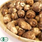 【サイズ混合】 有機 里芋 5kg 有機JAS (千葉県 株式会社びおロジ) 産地直送