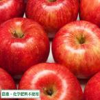 【緩衝地帯・家庭用】ふじ 3kg箱 農薬不使用  (青森県 福田秀貞) 産地直送